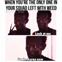 nerd meme: YOUR SQUAD LEFT WITH WEED  NERD  Look at me  pm in charge now