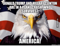 Who Meme: 1DONALDNTRUMPANDIHILLARYCLINTON  ARE IN A PLANECRASHbWHO  SURVIVE SP  AMERICA!  MEMEFUL.COM