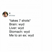 Wyd, Brain, and Relatable: @1inher  *takes 7 shots*  Brain: wyod  Liver: wyd  Stomach: wyd  Me to an ex: wyd wyd