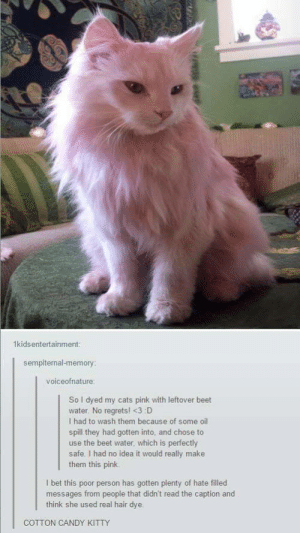 Pink kittyomg-humor.tumblr.com: 1kidsentertainment:  sempiternal-memory:  voiceofnature:  Sol dyed my cats pink with leftover beet  water. No regrets! <3 D  I had to wash them because of some oil  spill they had gotten into, and chose to  use the beet water, which is perfectly  safe. I had no idea it would really make  them this pink.  I bet this poor person has gotten plenty of hate filled  messages from people that didn't read the caption and  think she used real hair dye.  COTTON CANDY KITTY Pink kittyomg-humor.tumblr.com