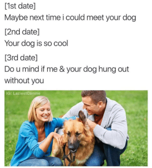 Cool, Date, and Time: [1st date]  Maybe next time i could meet your dog  [2nd date]  Your dog is so cool  [3rd date]  Do u mind if me & your dog hung out  without you  IG: LaziestCanine Careful about using your dog to improve your chances!