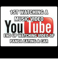 Video: 1ST WATCHING A  MUSIC VIDEO  You  lube  ENDUPWATCHING VIDEO OF  PANDA EATING ACAR