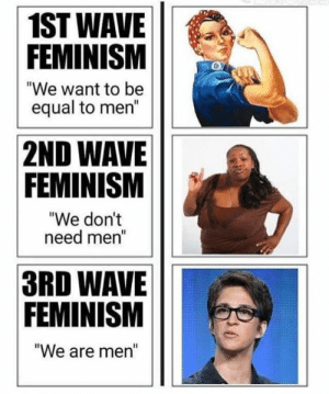 """Feminism, Memes, and 🤖: 1ST WAVE  FEMINISM  """"We want to be  equal to men""""  2ND WAVE  FEMINISM  """"We dont  need mer  3RD WAVE  FEMINISM  We are men"""" We might have to delete this one before fb catches on..."""