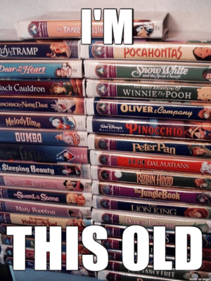 My movie cabinet growing up: 1THe Three all  POCAHONTAS  dy-TRAMP  Onow White  Dear Heart  and the Seven Drwarfe  TRE MGRY AGCENTrarat of  WINNIEThe POOH  ack Cauldron  OLIVER Company  UNCHBACKNomDAME  MelodyTime  DUMBO  PINOCCHIO  S  Wur Dlenep'e  MASEESPIECE  Peter Pan  NENDALMATIANS  Steeping Beauty  ROBIN HCOD  Tihg ungle Book  BEDWNOSTR RROOMSUGRS  FSwOrdit Stone  LION KING  Mary Poppins  ane's DRAGOr  The detres 0  elaibodd  THIS OLD  NCY FREE  made on imgur My movie cabinet growing up
