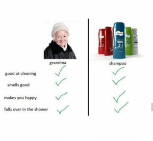 absolutely: 2-1  grandma  shampoo  good at cleaning  smells good  makes you happy  falls over in the shower absolutely