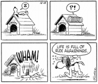 "This strip was published 59 years ago today on December 12, 1958. It is the first time that Snoopy sleeps on top of his doghouse.   ""He [Snoopy] started as a dog who didn't do much. As my drawing improved, I was able to get him to do things that he couldn't do before. He'd be lying in peculiar positions - his head in his water dish or on a rock. I don't recall how he got on top of that doghouse. The first time he fell off and the strip ended with his saying 'Life is full of rude awakenings.' After that he was never seen in the doghouse. As long as he was going to live in that fantasy world, it was shown only in side view, never inside - it wouldn't be right."" –Charles M. Schulz: /2-12  2  2  NOOp,  NOOp  LIFE IS FULL OF  RUDE AWAKENINGS This strip was published 59 years ago today on December 12, 1958. It is the first time that Snoopy sleeps on top of his doghouse.   ""He [Snoopy] started as a dog who didn't do much. As my drawing improved, I was able to get him to do things that he couldn't do before. He'd be lying in peculiar positions - his head in his water dish or on a rock. I don't recall how he got on top of that doghouse. The first time he fell off and the strip ended with his saying 'Life is full of rude awakenings.' After that he was never seen in the doghouse. As long as he was going to live in that fantasy world, it was shown only in side view, never inside - it wouldn't be right."" –Charles M. Schulz"