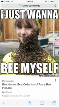 BEE_irl: 2:17 AM  24%  OOOOO AT&T  a funny bee meme  JUST WANNA  BEE MYSELF  memecenter.com NMeneCentera  Memecenter  Bee Memes. Best Collection of Funny Bee  Pictures  Bee Myself  Images may be subject to copyright. BEE_irl