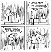 This strip was published on February 17, 1978. ☔️: 2-17  WHERE ARE ALL  MY FRIENDS?!  GOOD GRIEF  I'M DROWNING! This strip was published on February 17, 1978. ☔️