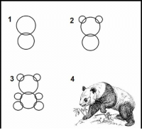 how to draw a panda: 2  3  4