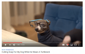 Tumblr, Blog, and Http: 2:40/10:56  HD  #4 EN TENDENCIAS  Cutting Soap For My Dog While He Wears A Turtleneck the-stray-liger:on the plus side we'll always have jenna marbles