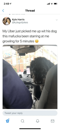 """Uber, Star, and Been: 2:48 1  Thread  Kyle Harris  @kylegotjokes  My Uber just picked me up wit his dog  this mafucka been starring at me  growling for 5 minutes  Tweet your reply """"1 star rating"""""""