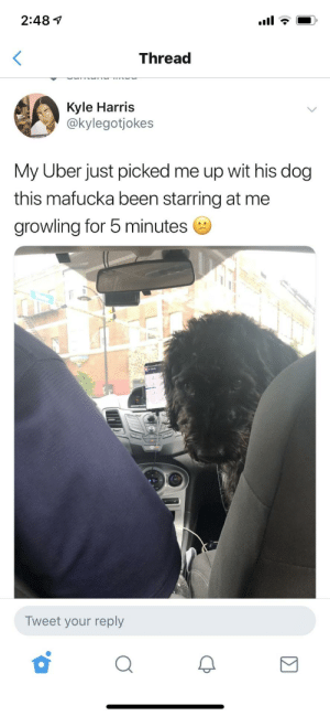 "Dank, Memes, and Target: 2:48 1  Thread  Kyle Harris  @kylegotjokes  My Uber just picked me up wit his dog  this mafucka been starring at me  growling for 5 minutes  Tweet your reply ""1 star rating"" by shaidoclan MORE MEMES"
