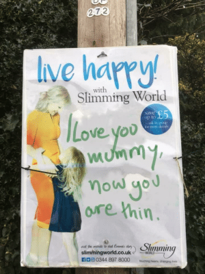 Bad, Love, and Skinny: 2 7 2  Ive harry  Love  with  Slimming World  save  up to  -ask in  you  mumm  or more c  ore thin  mmin  slimmingworld.co.uk  n口回0344 897 8000  touching harts, changing hee SKINNY BAD GIBE ME KARNA