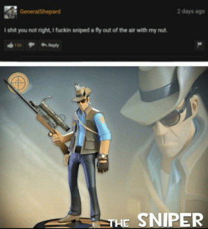 God, Reddit, and Shit: 2 days ago  GeneralShepard  I shit you not right, I fuckin sniped a fly out of the air with my nut  Reply  130  THE SNIPER God amongst men