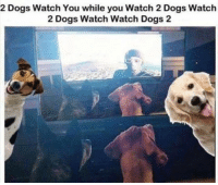 My brain hurts: 2 Dogs Watch You while you Watch 2Dogs Watch  2 Dogs Watch Watch Dogs 2 My brain hurts