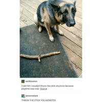 """Dildo, Monster, and Tumblr: 2 earthly nation  I told him l wouldn't throw the stick anymore because  playtime was over. Source  C ty morrow land  THROW THE STICK YOU MONSTER My favorite quote is """"everything's a dildo if you're brave enough"""" because it's truu.. So I'm starting a YouTube account called 'im brave enough'"""
