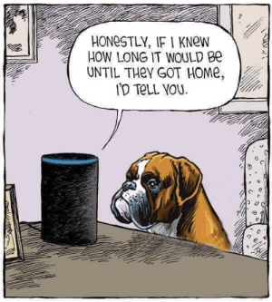 Alexa: 2  HONeSTLY, IF I KNew  HOW LONG IT WOULD Be  UNTIL THeY GOT HOMe Alexa
