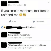Memes, Free, and 🤖: 2 hrs . Des Moines .  If you smoke marinara, feel free to  unfriend me )  I Like  Comment  and 11 others  l only smoke mozzarella  1 hour ago . Like . 1 . Reply  Tripping my balls on some ranch right now  1 hour ago . Like . 1 . Reply Marinara. Not even once.