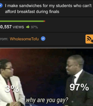Why are you: 2 I make sandwiches for my students who can't  afford breakfast during finals  0,557 VIEWS  97%  rom: WholesomeTofu  97%  3%  why are you gay? Why are you