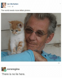 Memes, Ian McKellen, and World: 2 Ian McKellen  7 hrs  The world needs more kitten photos.  Coraregina  There is no lie here. Ian McKellen sounds familiar but idk who he is????? @idiosyncrat