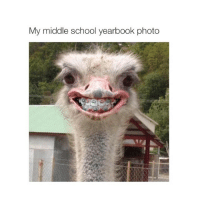 literally me: My middle school yearbook photo literally me