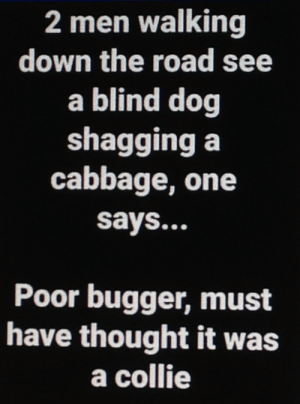 The Road, Thought, and Dog: 2 men walking  down the road see  a blind dog  shagging a  cabbage, one  says...  Poor bugger, must  have thought it was  a collie 10/10 Would Title Again