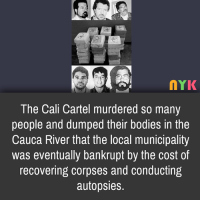 Cartelling: 2  nYK  The Cali Cartel murdered so many  people and dumped their bodies in the  Cauca River that the local municipality  was eventually bankrupt by the cost of  recovering corpses and conducting  autopsies