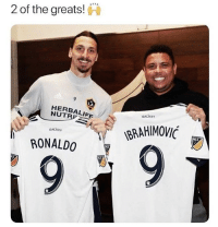 """I'll have two number 9's"" 😂: 2 of the greats!  9  LA  HERBALIFE  GALAXY  NUTR  BRAHIMOVI  MLS  GALAXY  RONALDO ""I'll have two number 9's"" 😂"