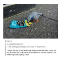 Fucking, Hello, and Memes: 2-shane-s:  birdsofafeathercolchester:  I Little knitted pigeon enjoying come crisps on the pavement...  thought that only the bag of chips was knitted so lwas like Imaoo fucking idiot  bird got owned then saw that the bird was knitted as well then I realized I was  the fucking idiot bird getting owned hello kiddies, @eatbluecookies is back:)