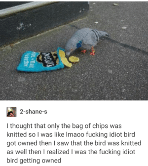Fucking, Saw, and Idiot: 2-shane-s  I thought that only the bag of chips was  knitted so I was like Imaoo fucking idiot bird  got owned then I saw that the bird was knitted  as well then I realized I was the fucking idiot  bird getting owned idiot bird getting owned