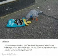Dank, Shane, and The Birds: 2-shane-s  thought that only the bag of chips was knitted so l was like lmaoo fucking  idiot bird got owned then I saw that the bird was knitted as well then l realized  I was the fucking idiot bird getting owned  Source: birds ofafeathe...