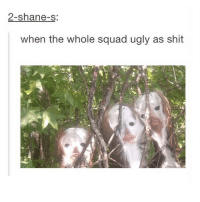 Ratchet, Ratchetness, and Shane: 2-shane-s:  when the whole squad ugly as shit go ho go @ratchet_memes I