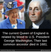 queen of england: 2  The current Queen of England is  related by blood to U.S. President  George Washington. Their last  common ancestor died in 1681.  weird-facts.org  @factsweird