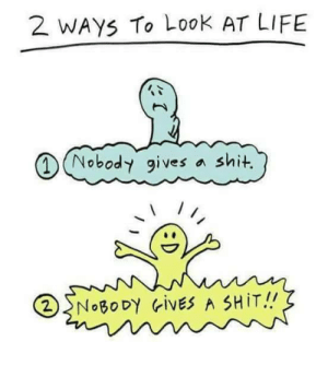 I choose 2!: 2 WAYS To Look AT LIFE  MNobody gives  a shit  2NOBODY ivES A SHIT! I choose 2!