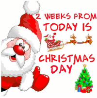 Memes, And Funny, and 🤖: 2 WEEKS PROM  TODAY IS  CHRISTMAS  DAY For more awesome holiday, retro, and funny pictures go to... www.snowflakescottage.com