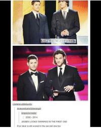 Memes, Omg, and Thank You: 20  2006-2014  JENSEN LOOKS TERRIFIED IN THE FIRST ONE  Poor dear is still scared in the second one to0 Can't believe I've reached 60k followers, omg!!! Thank you guys so much!! | (Check link in bio!) supernaturalsaturday ghosts demons angels ghouls monsters notnatural hunters carryonmywaywardson supernatural supernaturaltumblr supernaturalfamily supernaturalfans jensenackles jaredpadalecki samwinchester deanwinchester