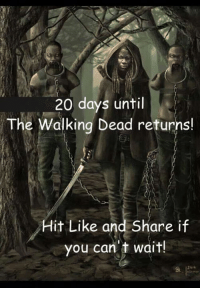 Memes, The Walking Dead, and Vans: 20 days until  The Walking Dead returns!  it Like and share i  you can't wait! #TheWalkingDead fans, I'm honestly not hearing from you guys? Please ACTUALLY RESPOND today. :) (y)  Photo credit: Elliot Van Orman Productions