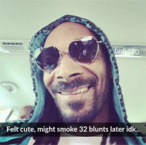Blunts, Cute, and Smoke: 20  Felt cute, might smoke 32 blunts later idk..