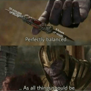 Perfect balance by Faux_Hound MORE MEMES: 20  of  Perfectly balanced  As all things/should be. Perfect balance by Faux_Hound MORE MEMES