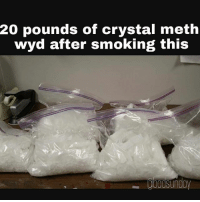 Yo webkinz is lit sorry with the repost had to fix something with the last one: 20 pounds of crystal meth  wyd after smoking this Yo webkinz is lit sorry with the repost had to fix something with the last one