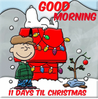 Memes, And Funny, and 🤖: 200  MORNING  11 DAYS TIL CHRISTMAS For more holiday, retro, and funny pictures go to... www.snowflakescottage.com