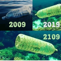 Tumblr, Blog, and Com: 2009  2019  2109 sixpenceee: It can take more than 450 years for plastic bottles to decompose!