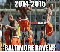 25 Best Baltimore Ravens Memes The Memes Welcome To Memes Age Memes