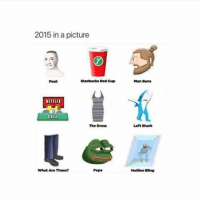 2015 in a picture  Starbucks Red Cup  NETRIII  The Dress  What Are Those?  Man Duns  Left Shark  Hotline Bang Add more down in the comments 😂😂😂👇