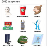 2015 in a picture  Starbucks Red Cup  Poot  NETFLIX  CHILL  The Dress  What Are Those?  Pepe  Man Buns  Left Shark  Hotline Blina