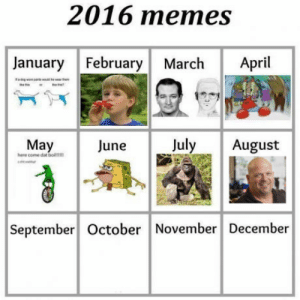 Memes, April, and September: 2016 memes  January February March April  May  hee come datbo  June  July August  ve  September October November December Popular memes by month