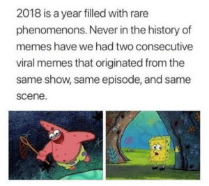 Meme, Memes, and History: 2018 is a year filled with rare  phenomenons. Never in the history of  memes have we had two consecutive  viral memes that originated from the  same show, same episode, and same  scene. Rare Phenomenons 2018 Meme addition (i.redd.it)