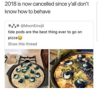 """Memes, Pizza, and Best: 2018 is now cancelled since y'all don't  know how to behave  萃6%줏 @MoonEmoji.  tide pods are the best thing ever to go on  pizza  Show this thread <p>WHYYY? via /r/memes <a href=""""http://ift.tt/2lycEYw"""">http://ift.tt/2lycEYw</a></p>"""