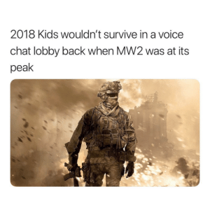 BIG FACTS by KINGVACAY MORE MEMES: 2018 Kids wouldn't survive in a voice  chat lobby back when MW2 was at its  peak BIG FACTS by KINGVACAY MORE MEMES