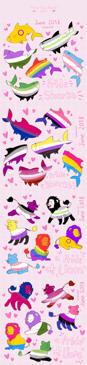 turtletoria-art:  I drew a bunch of LGBTQ+ lions and sharks for pride month!!Happy pride everyone!!!! ❤🌈: 2018   NAI June 2018  urtletoriav  Eurtletoriav  turtle  torio  turtletoria  turtletoriav  turbletorio V  Pridea  urtletoria V   turbletoria V  turtletoria V  3 0  turtletoria V  ur  turtle  Pride  turtletor   /q  Pridle  turtletoria  turtletoria   turtletoria  turtetoriav  a Pride  turletoria V  urtletoria V turtletoria-art:  I drew a bunch of LGBTQ+ lions and sharks for pride month!!Happy pride everyone!!!! ❤🌈